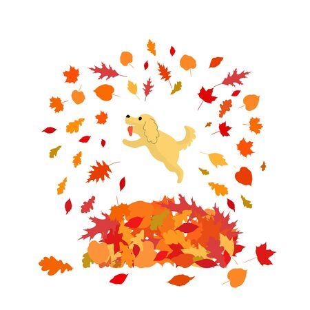 Happy dog is jumping to big heap of autumn leaves. Isolated on white background. Stock vector illustration.