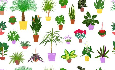 Seamless pattern from different house plants in colorful flower pots. Vector illustration.