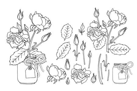Hand drawn rose flowers in mason jar clipart monochrome set. Floral design element. Isolated on white background. Vector illustration. Ilustración de vector