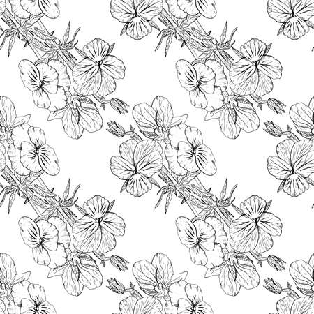 Monochrome floral seamless pattern with hand drawn pansy flowers on white background. Stock vector