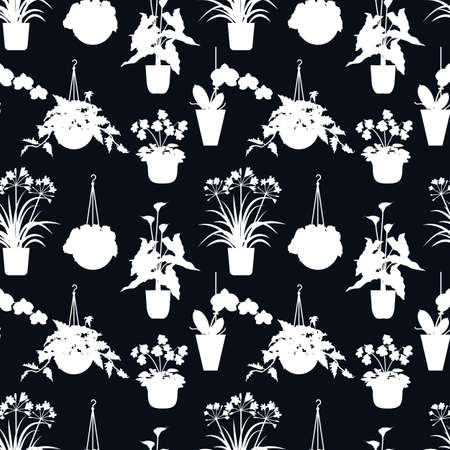 Tropical house plants silhouettes. On a black background