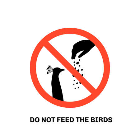 Prohibition sign with text do not feed the birds and hand silhouette giving food to peacock  イラスト・ベクター素材
