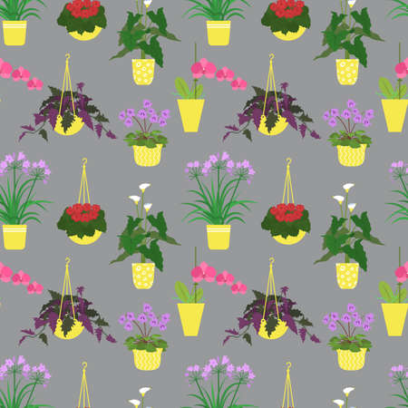 Seamless pattern with potted tropical house plants in colorful flower pots. On a gray background