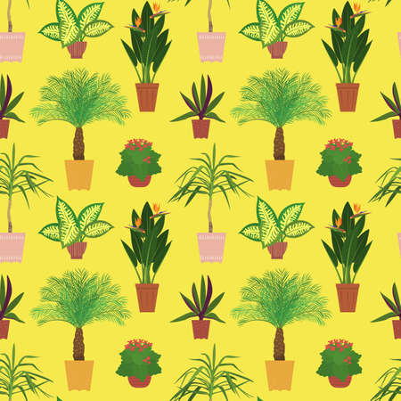 Seamless pattern with potted tropical house plants in colorful flower pots