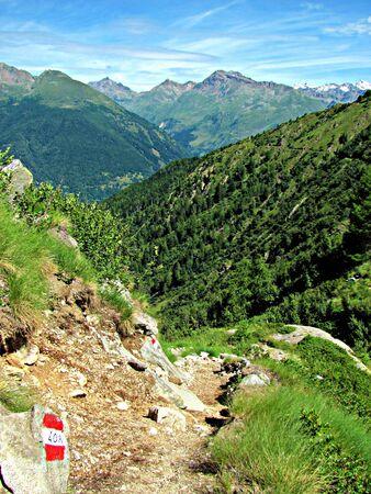 Camminando su un sentiero di montagna, guardando in lontananza Foto scattata in una soleggiata giornata estiva paesaggio italiano Alpi - Ponte di Legno