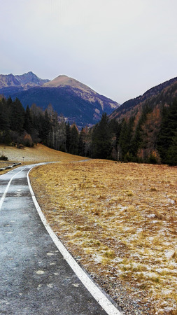Mountain landscape in a cloudy winter morning (vertical format). A frozen paved bike path That disappears into the woods (pine forest). Ponte di Legno, Lombardia, Italy.