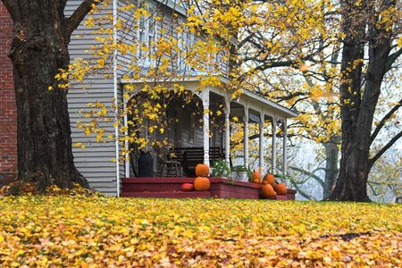 Fall is here with lots of colorful leaves & pumpkins at the homestead