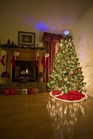 Home for Christmas, moms got the house decorated, tree lit up, waiting for santa photo