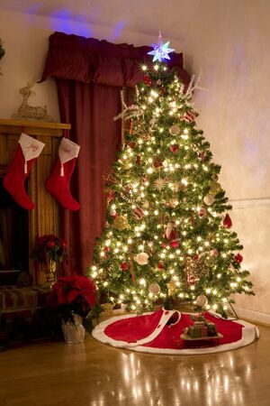 adorning: Home for Christmas, moms got the house decorated, tree lit up, waiting for santa