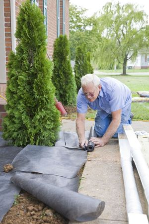 bark mulch: Handy man adding trees to landscape at front of home
