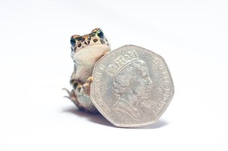 crazy frog: heaps of various coins and crazy frog