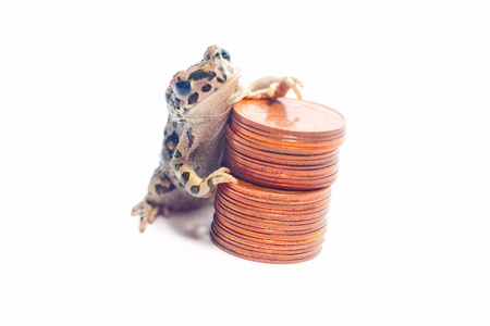 crazy frog: heap of various coins and crazy frog
