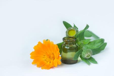 calendula flowers isolated on white with bottle Stock Photo