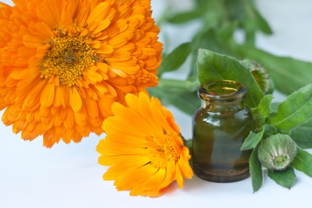 calendula flowers isolated on white with bottle Stock Photo