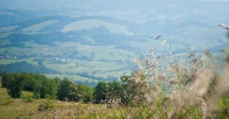 Summer mountain view to Borzhava  (Carpathian mountains, Ukraine). Stock Photo