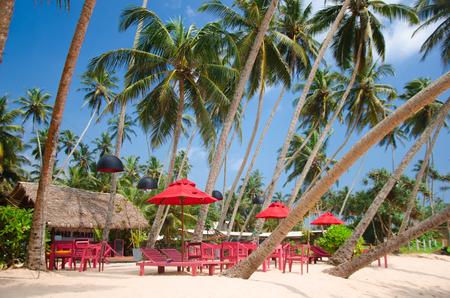 Beautiful tropical beach with great waves.Sri lanka