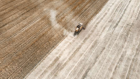 Workers on combine harvester collect ripe corn. Aerial top view