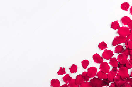 Pink rose petals on white wooden background