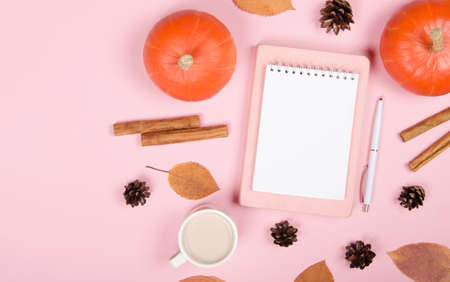 Autumn background with notepad, orange pumpkin, cinnamon and leaves on pink background Standard-Bild