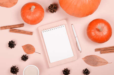Autumn background with notepad, orange pumpkin, cinnamon and leaves on light background
