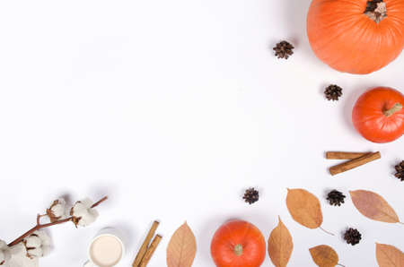 Autumn background with pumpkin, cinnamon and leaves on white background