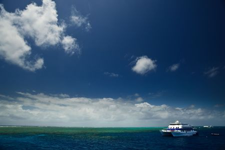 Great Barrier Reef Australia coral clam beds photo