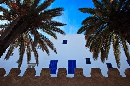 whitewashed: Essaouira, Morocco: Whitewashed exterior wall with blue windows and palm trees , Essaouira, Morocco