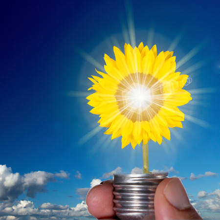 Sunflower in a light bulb representing clean and green energy  photo