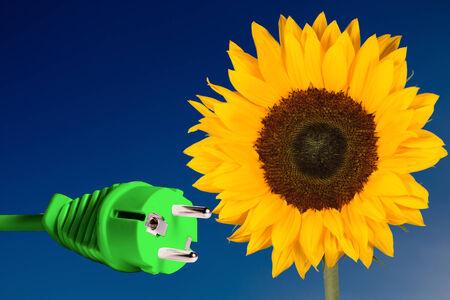 Girasole con una spina verde che rappresenta l'energia pulita Archivio Fotografico - 28109738