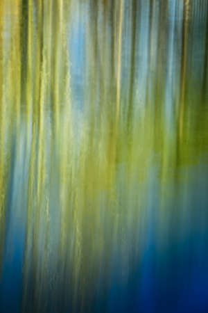 spiegelung: blurred reflection of green trees on the surface of a pond as a colorful dreamy  background