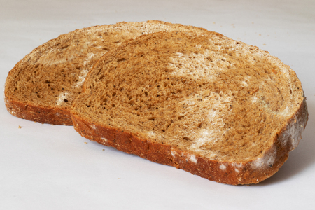 Two slices of rye bread, covered with mold, lie one behind the other, on a white background, at an angle.