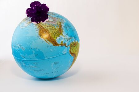 On a white background - a school globe with the image of the continents.