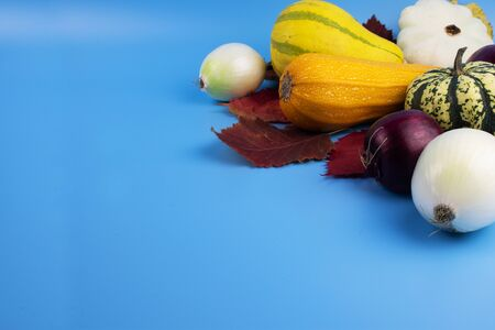 On a blue background, red, yellow and green autumn leaves along with vegetables, which are zucchini, two decorative pumpkins, squash and onion heads. Stock Photo - 131735287