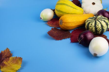 On a blue background, red, yellow and green autumn leaves along with vegetables, which are zucchini, two decorative pumpkins, squash and onion heads.