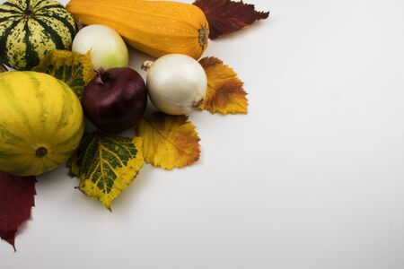 On a white background, red, yellow and green autumn leaves along with vegetables, which are zucchini, two decorative pumpkins, squash and onion heads.