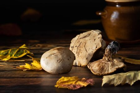 Forest mushrooms with leaves lie on a brown wooden table. In the background is a clay pot. Stock Photo