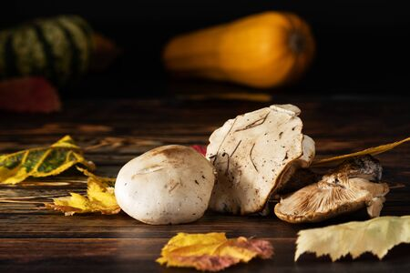 In the foreground, on a wooden table are three forest mushrooms with yellow autumn leaves. In the background is a pumpkin and a yellow zucchini. Stock Photo
