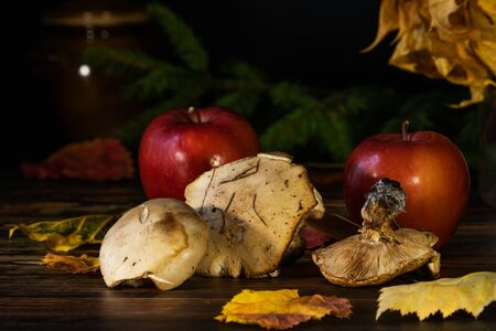 Three forest mushrooms and two ripe apples lie on a table among autumn yellow leaves. In the background is a clay pot and a pine twig.