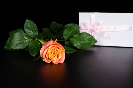 A sprig of tea rose lies on a black table with a gift box tied with a pink ribbon.