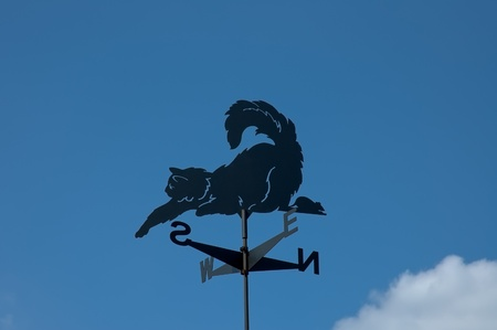 Weather Vane  photo