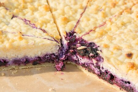 Homemade blueberry pie. Picture taken at the spring fair under the open sky on a sunny day. Close-up.