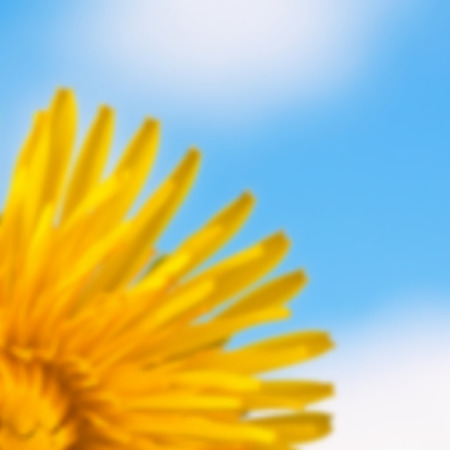 Blurred background with yellow dandelion flowers blue sky and clouds.  Ilustracja