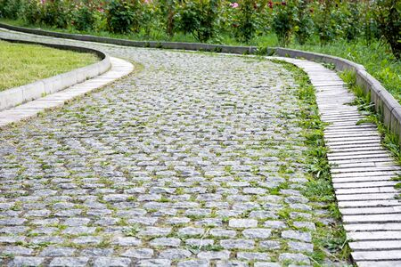 Park walkway of paving stones with rose bushes in the background. Zdjęcie Seryjne