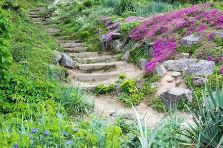 Stone steps surrounded by beautiful flowers and green vegetation. Standard-Bild