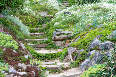 Stone steps surrounded by beautiful flowers and green vegetation. Close up.