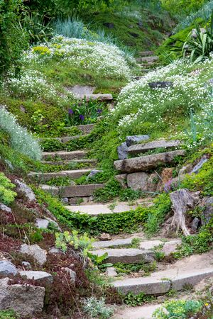 landscaping in the garden with stone, stairs and flowers