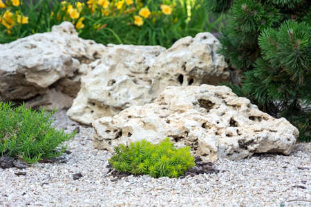 Flowerbed with stones and bushes as a decorative elements. Landscape design. Zdjęcie Seryjne
