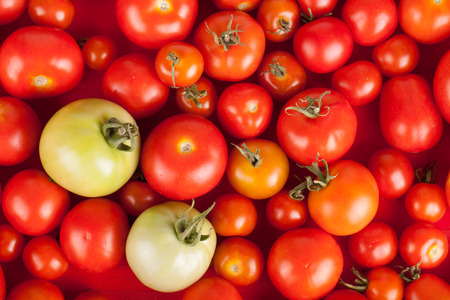 domates: freshly picked red tomatoes in a box plus two green