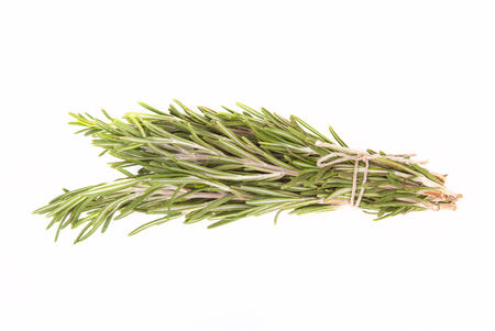bunch up: Bunch of rosemary tied up twine on a white background