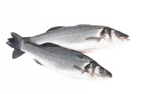 Two fresh fish on a light background. Imagens